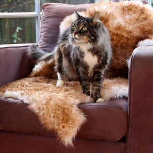 Pet Care Sheepskin - natural shape