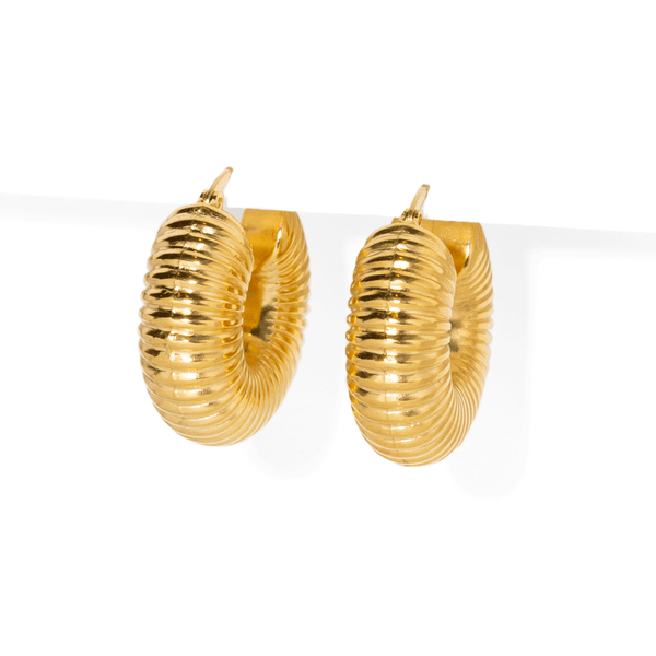 GOLDEN MONARCH HOOPS