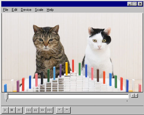 Cats and Domino by Cat Navi Desk