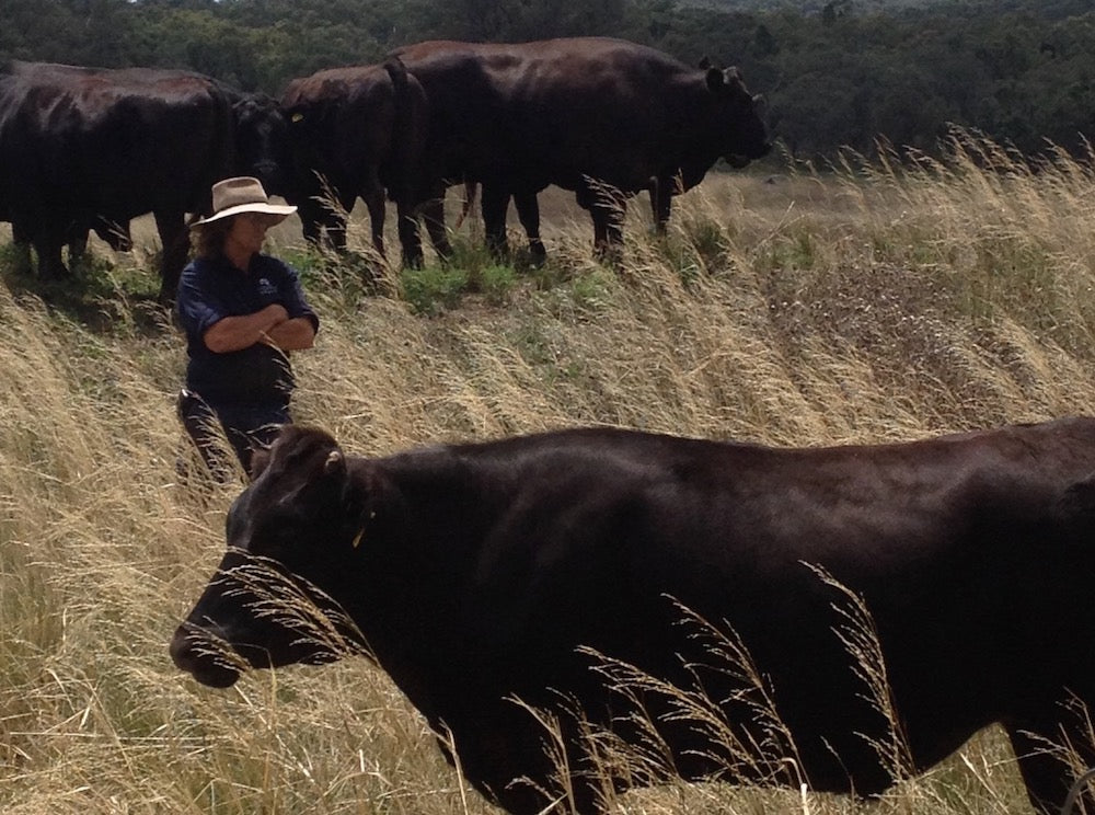We're proud to be slow: a rare offering of 3-4 year-old Gundooee Organic Wagyu