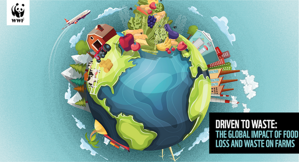 WWF Driven to Waste farm waste report