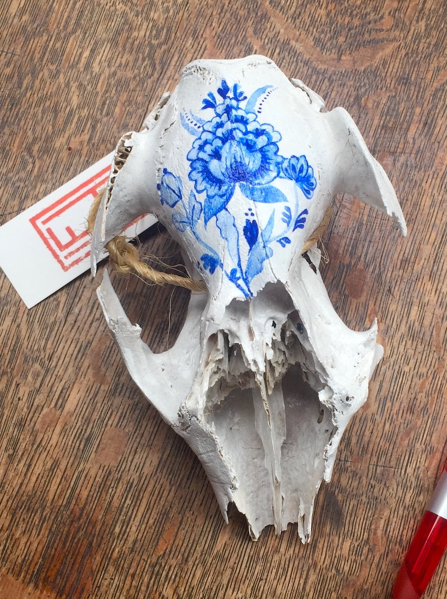 Hand painted wallaby skull - blue