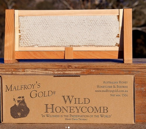 Malfroys Gold Wild Honeycomb: Blue Mountains wilderness
