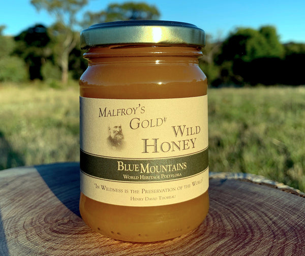 Malfroy's Gold Wild Honey: Blue Mountains wildflower