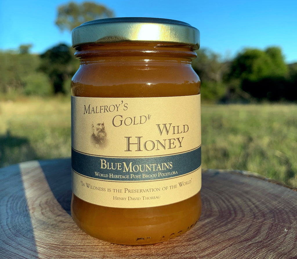 Malfroy's Gold Wild Honey: Blue Mountains Postbrood 200 gm