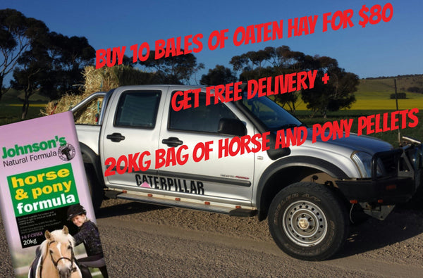 10x OATEN HAY w/ FREE DELIVERY + HORSE AND PONY PELLETS
