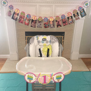 Double Scoop Ice Cream Photo and Highchair Banner