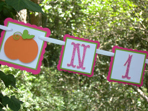Little Pumpkin First Year, 1st Birthday Photo Banner or Photo Display in Hot Pink and Orange
