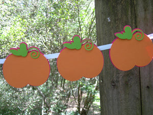 Little Pumpkin Garland in Hot Pink, Orange, and Green for Birthday, Baby Shower, Backdrop, or Photo Prop