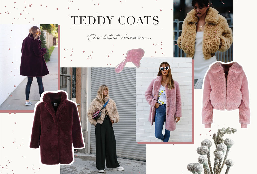 Teddy Jackets