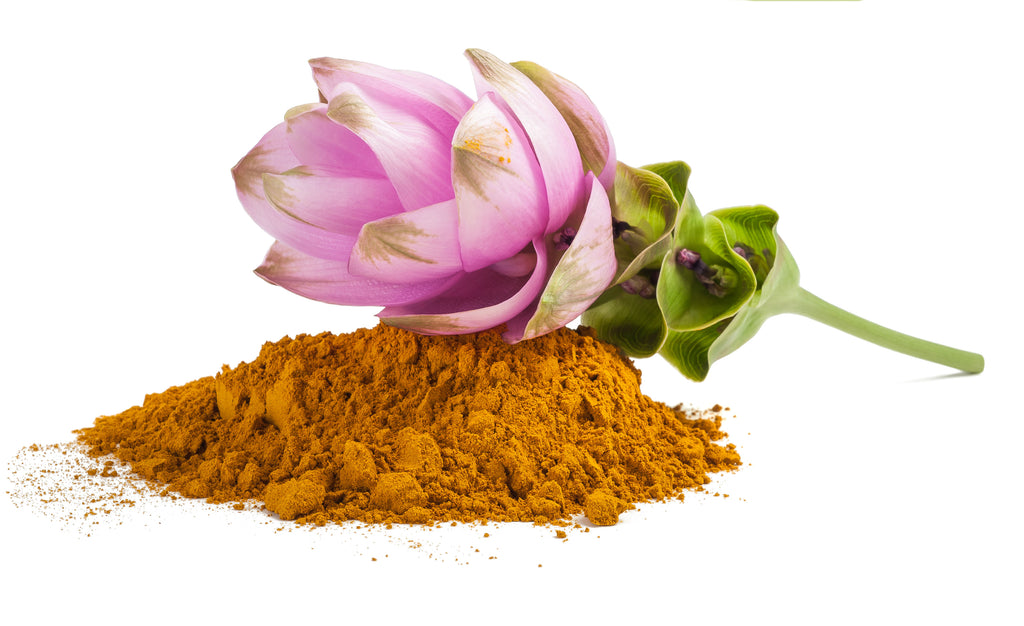 Organic Turmeric Curcumin with BioPerine and Organic Ginger