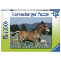 Ravensburger - Colt in the Field 150pc Puzzle - Grace Baby