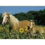 Ravensburger - Happy Horses Puzzle 200pc - Grace Baby