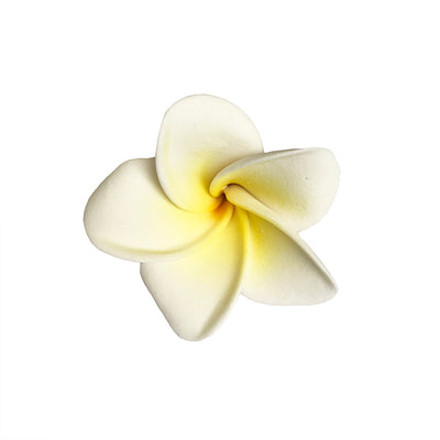 Frangipani - White and Yellow