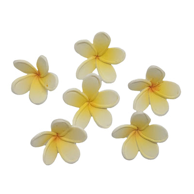 Cupcake Frangipanis- Yellow- 6pack - Small