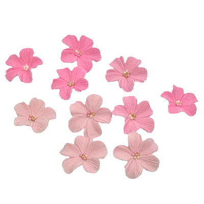 Sugar Blossoms - 12 pack- Pink Ombre