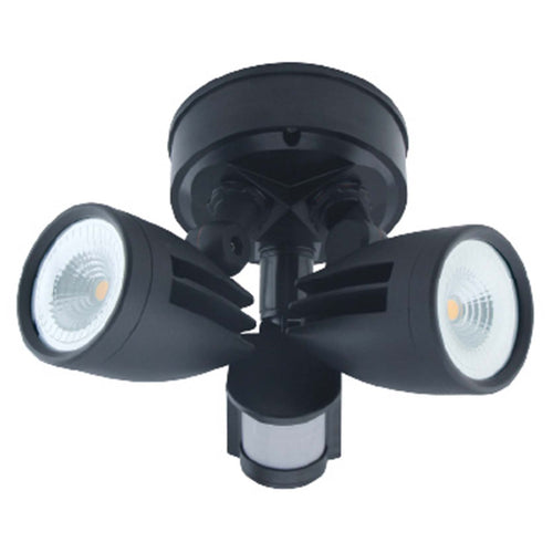 LED Double Head Floodlight