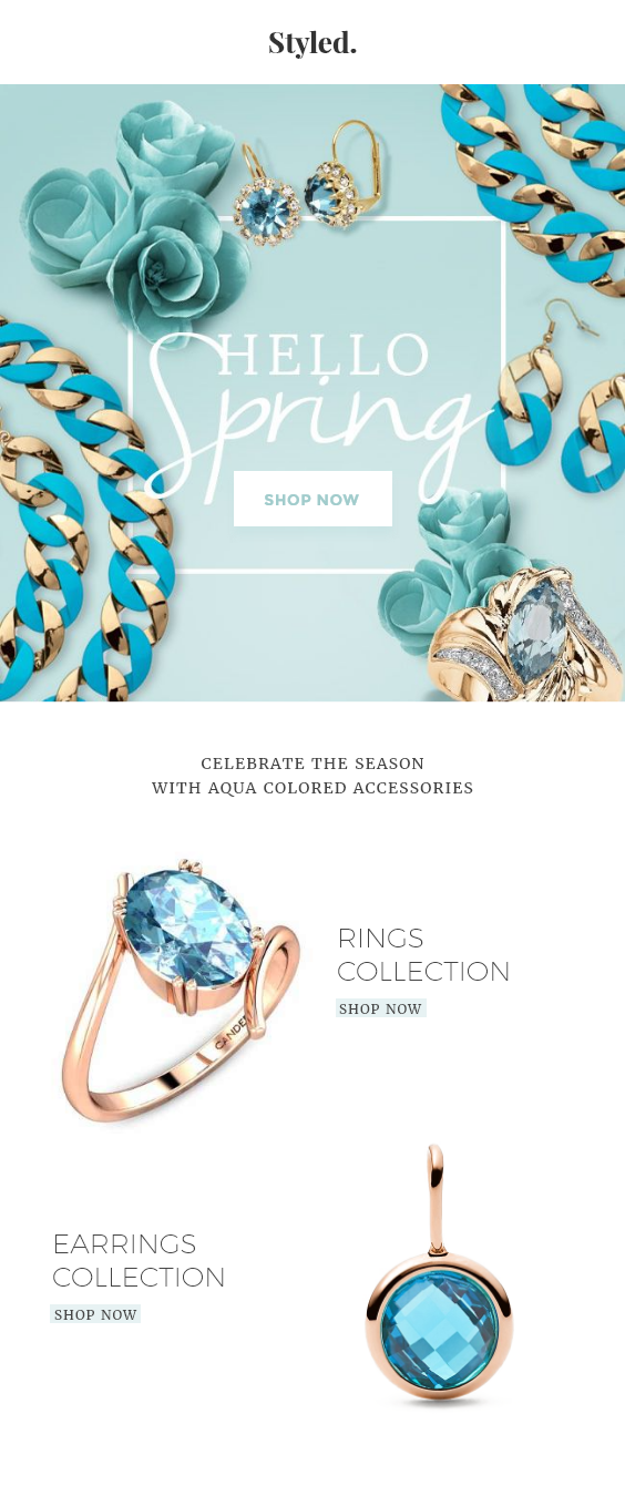 Jewelry Shop Shopify Store eCommerce Email Template