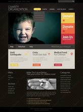 30418-WordPress Themes - GoWebBaby.Com