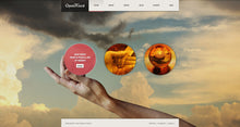 41429-WordPress Themes - GoWebBaby.Com
