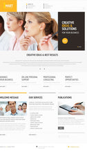 44206-WordPress Themes - GoWebBaby.Com