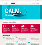 44406-WordPress Themes - GoWebBaby.Com