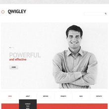 44526-WordPress Themes - GoWebBaby.Com
