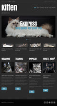 44902-WordPress Themes - GoWebBaby.Com