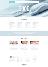 47830-WordPress Themes - GoWebBaby.Com