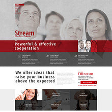 48246-WordPress Themes - GoWebBaby.Com