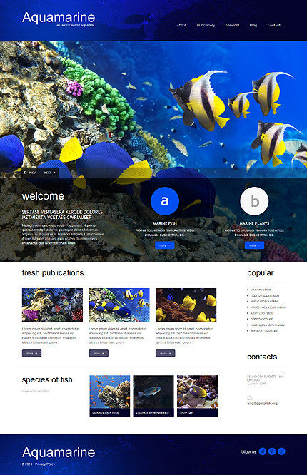51296-WordPress Themes - GoWebBaby.Com