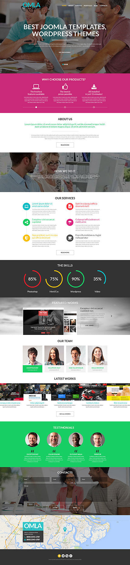 52037-WordPress Themes - GoWebBaby.Com