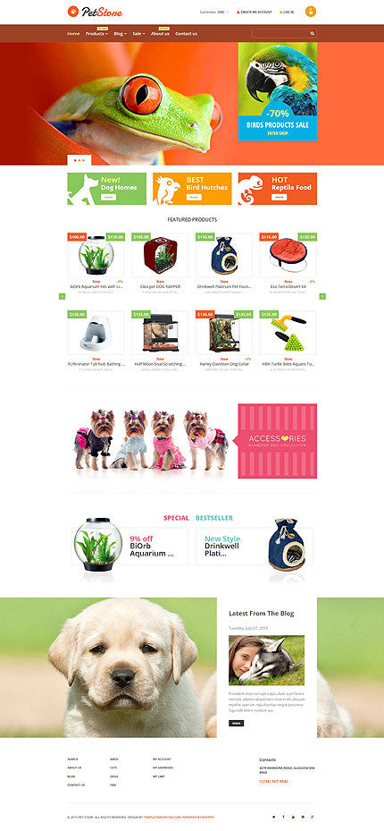 55163-Shopify Themes - GoWebBaby.Com