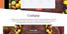 Shopify Themes - GoWebBaby.Com