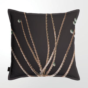 Scatter Cushion (DBL sided print ) - Palm Seeds 02