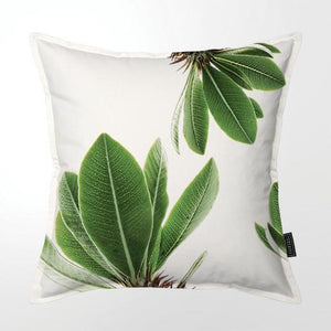 Scatter Cushion (Single sided print) - St. Verde