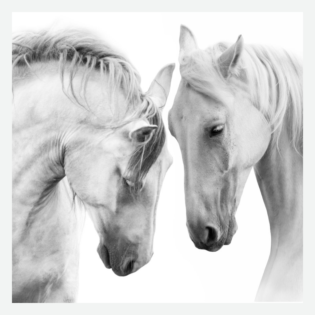 Horses wall art on canvas