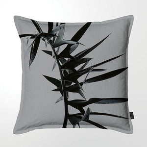 Scatter Cushion (DBL sided print ) - Silver Cycad