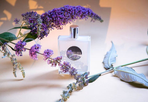 Helioflora - Pierre Guillaume White Collection - Bloom Perfumery