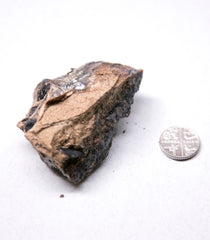 Black gold ambergris 25 g