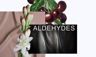 Aldehydes Pack - Bloom Sample Packs - Bloom Perfumery