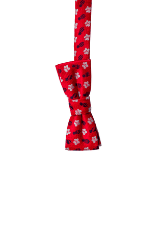 Pineapple Hibiscus Loose Red/Silver/Blue Kids Zipper Necktie