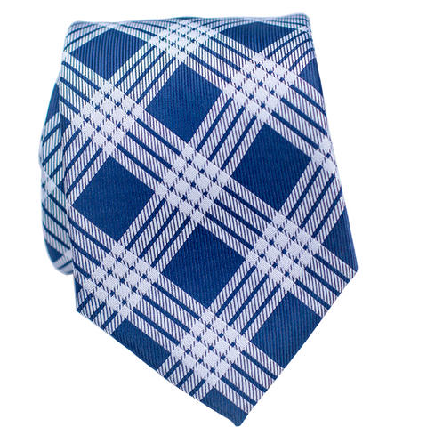 Nai'a Light Blue Modern Necktie