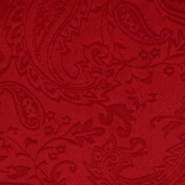 Embossed Paisley Red Minky