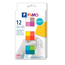 Pack 12 Colores Brillantes 25gr FIMO