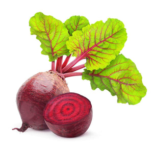 Beet Root Chukandar Chukander Garden Supply Heirloom Organic Seeds Vegetable Seeds