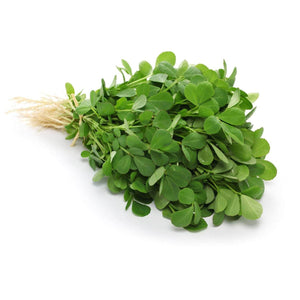 Fenugreek Methi Kasoori Methi Garden Supply Heirloom Herb Organic Seeds Vegetable Seeds