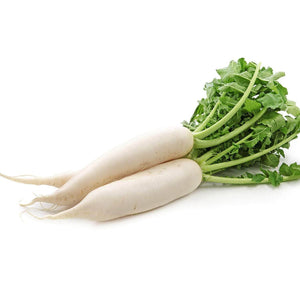 Radish Mooli Muli Garden Supply Heirloom Organic Seeds Vegetable Seeds
