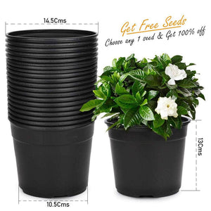 Black Nursery Flower Pots 14.5 Cms 6 Inch