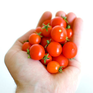 Vegetables Seeds Combo - 8 Veggies cherry tamatar tomato